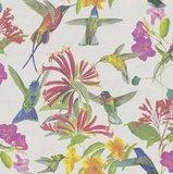 P+S Vliesbehang 02482-20 Kolibri wit/meerkleurig_