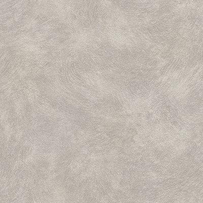 Rasch Metal Spirit behang 588385