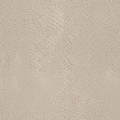 423624 african queen taupe