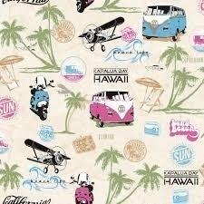 volkswagen hawaii