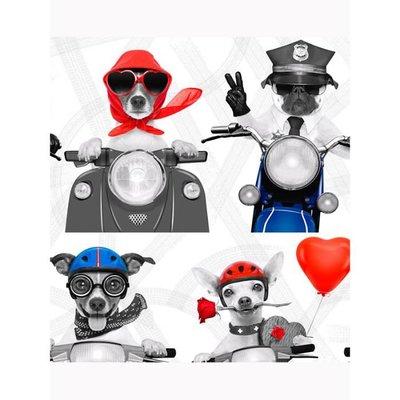 stoere motor honden