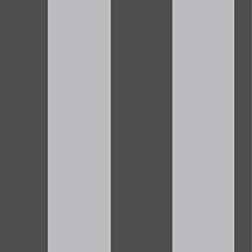 Rasch Behang 286922 zwart zilver