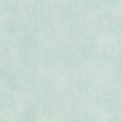 RASCH POP SKIN 494723 zacht groen/mint vacht optiek