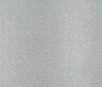 Rasch African Queen 422726 zilver grijs leer optiek