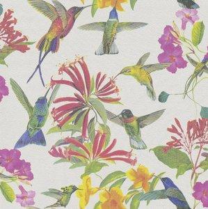 P+S Vliesbehang 02482-20 Kolibri wit/meerkleurig